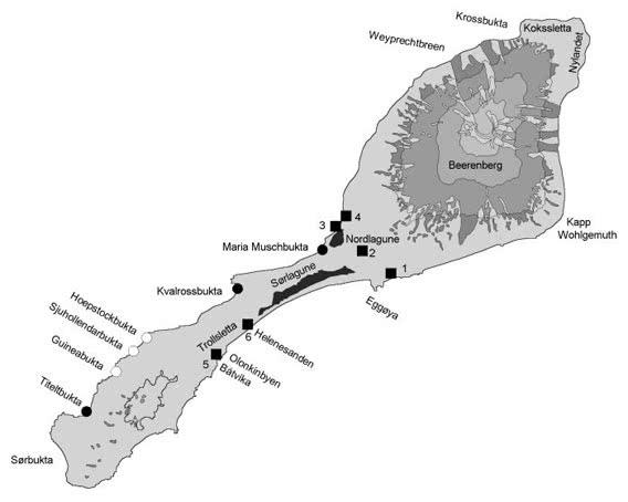 Jan Mayen map
